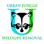 Urban Jungle Wildlife Removal Austin